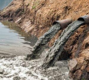 Hawaii lakosai bepereltek egy tehénfarmot a brutális környezetszennyezés miatt