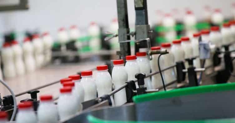 Amerika legnagyobb tejipari vállalata szerint a növényi tejtermékeké a jövő