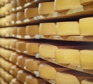 Több mint 600 ezer tonna állati eredetű sajt áll amerikai raktárakban mert senki nem akarja megvenni