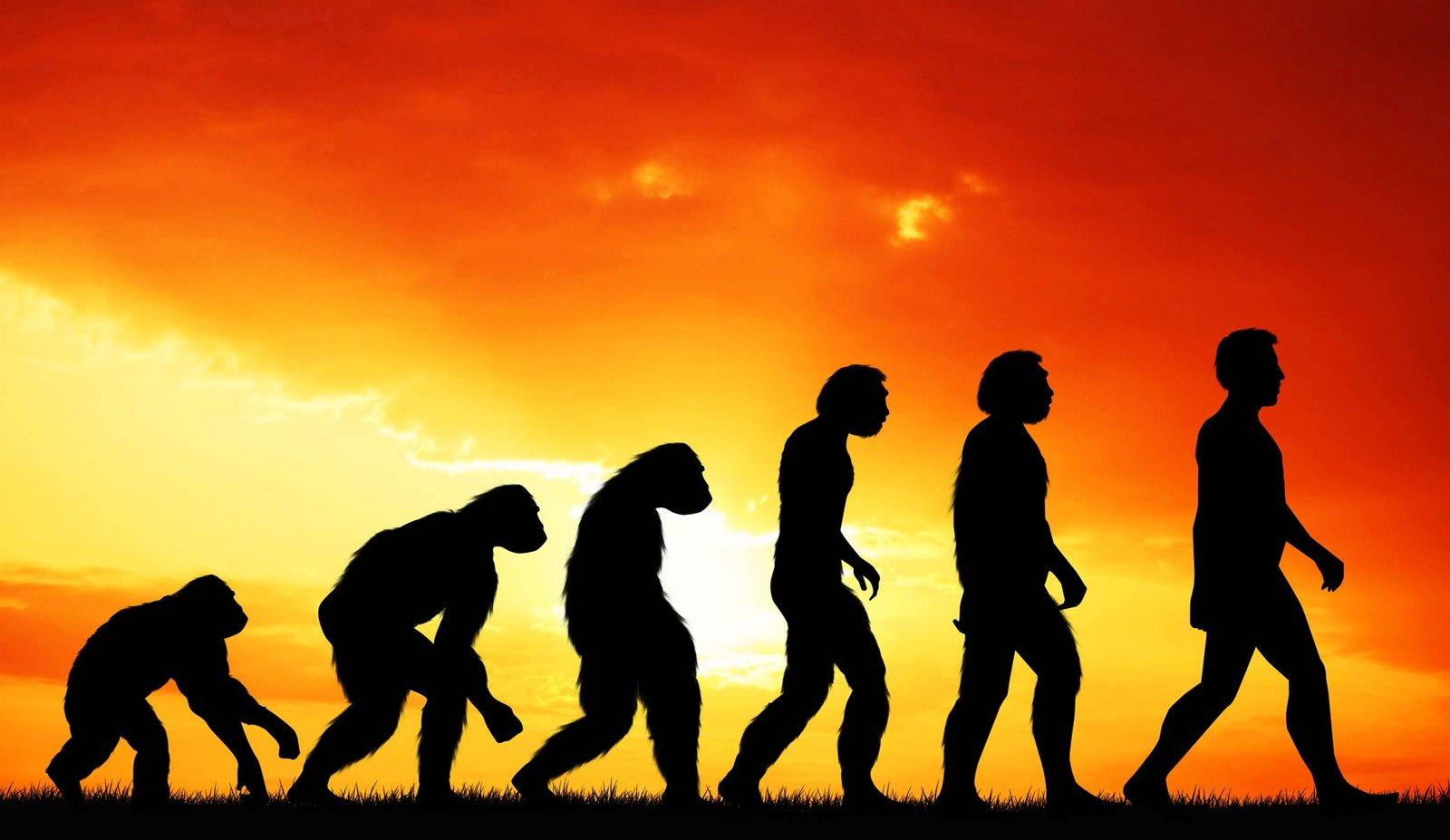 A növényi étrend az evolúció kezdete és vége