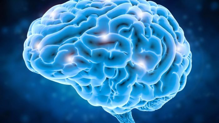 Az agyunk nem akarja beismerni a tévedést vagy hibát ezért megmagyarázza azt