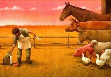 húsparadox - a húsevés erkölcsi aggályai