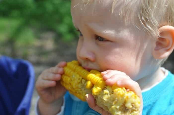 Gyermekek vs. zöldségek - hogyan egye a gyerek a zöldséget