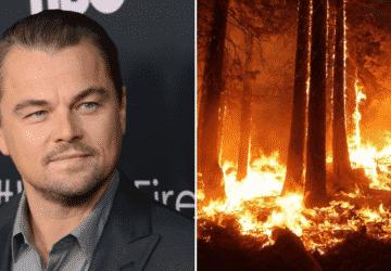 Leonardo DiCaprio szerint el kell hagynunk a marhahúst