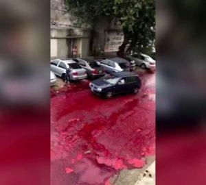 Vér az utcán egy vágóhíd miatt