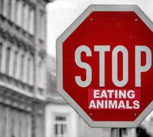 Stop Eating animals tábla