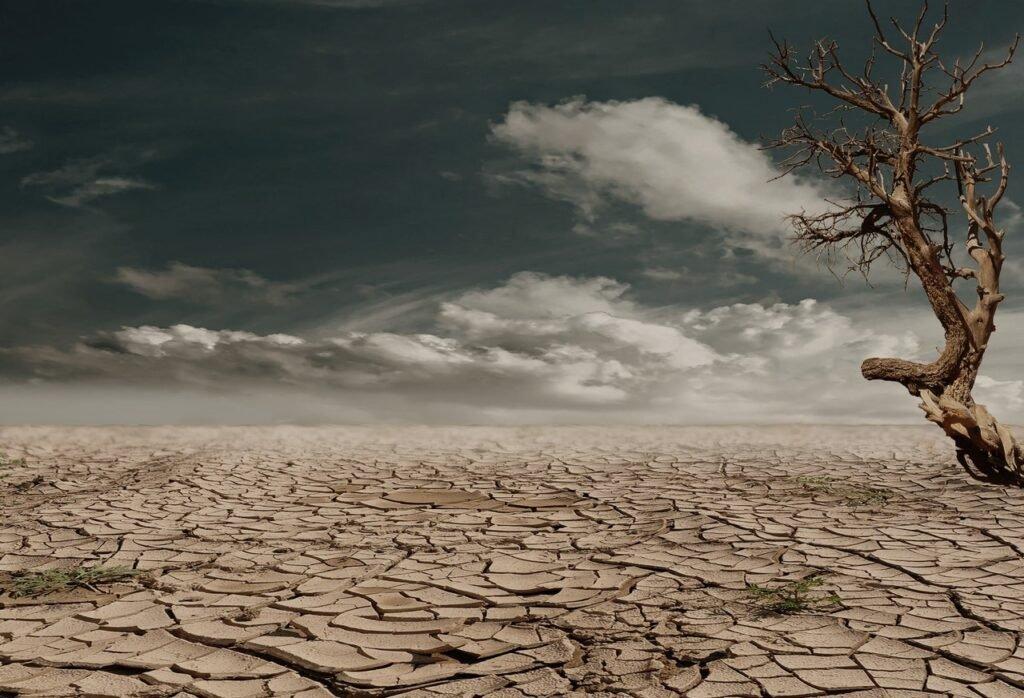 Klímaváltozás hatásai