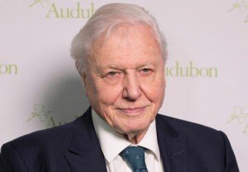 Sir David Attenborough szerint a vegánok mentik meg a világot