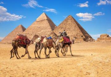 Betiltják a tevegelést és lovaglást a gízai piramisok körül