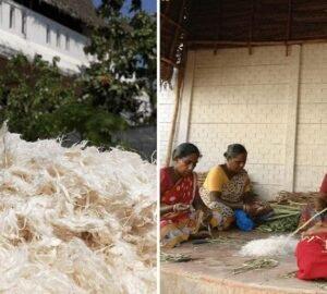 Indiai startup növényekből csinál vegán kasmírt