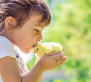 Vegán program kezdőknek - Veganuár 2021