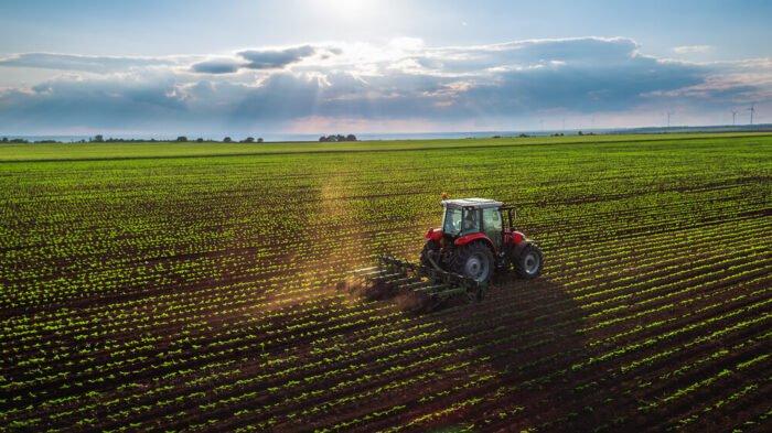 Növénytermesztés és aratás