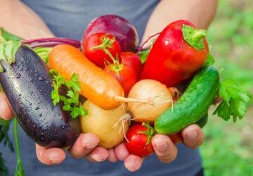 Inzulinrezisztencia vegánként