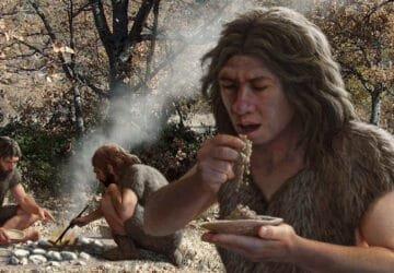 Neandervölgyi ember étrendje.